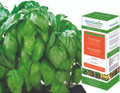 AeroGarden Pesto Basil Seed Kit