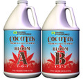General Hydroponics CocoTek Bloom A & B (Set of Gallons)