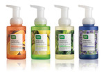 Clean Well™ All-Natural Antimicrobial Foaming Handsoap