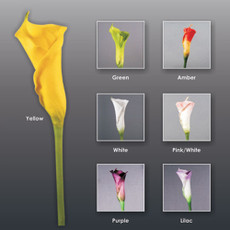 Real Touch Artificial Floramatique Medium Calla Lily Bud