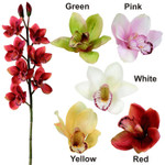 Real Touch Cymbidium Orchids