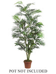 8-Foot Bamboo Palm, with 879 Leaves - Not Potted