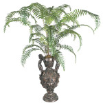 Boston Fern plant w/30 Leaves