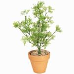Cotton Grass (PVC) Bush