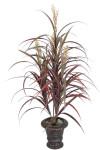 Grain sorghum bush x 4 with 104 Leaves