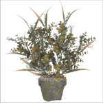 Mix Tea Leaf/Vanilla Grass/Eucalytus