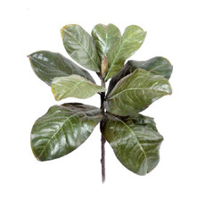 Artificial Magnolia Leaf Pick - Fake Leaves