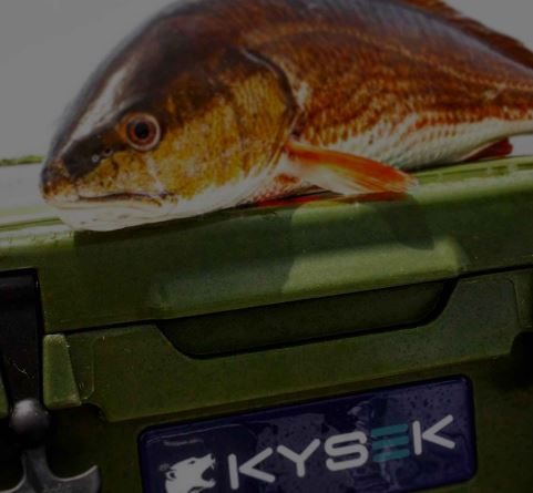 fish-ruler-on-cooler.jpg
