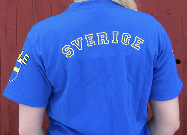 Swedish Flag Soccer Jersey (back)