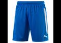 Puma Striker Shorts
