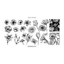 Botanicals 01 Mini Plate - Dixie Plates | AVAILABLE AT GIRLY BITS COSMETICS www.girlybitscosmetics.com