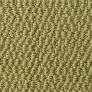 Discount Berber Carpet