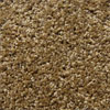 Jackpot Honey Beige Carpet