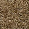 Jackpot Taupe Carpet