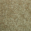 SP42 Biscotti Carpet - Click To View Details