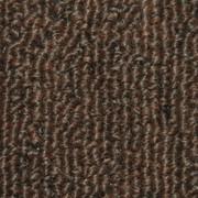 Lanai Indoor Outdoor Carpet