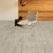 Shaw Ingrain Carpet Tile 24&quot; x 24&quot;