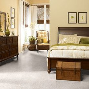 Guess Work (s) - 52T99 Shaw ANSO Nylon Carpet