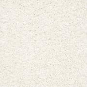 Uptown Girl - Z6169 Shaw ANSO Nylon Carpet