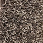 Front Runner (S) - 7704 Truffle - Residential Carpet