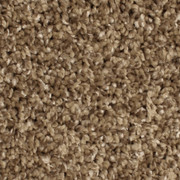 Voluptuous - 0231 Ecru - Residential Carpet