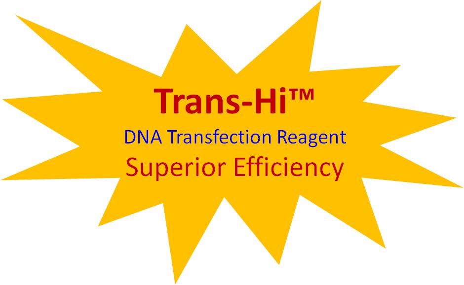 trans-hi-promotion.jpg