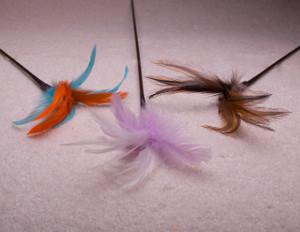 Feather Teaser
