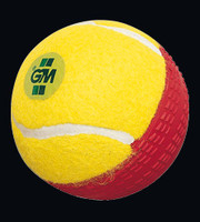 GM Swingking Cricket Ball