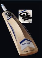 GM Octane F2 DXM 404 Harrow cricket bat