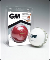 GM Cricket Skills Ball - Red/White Junior