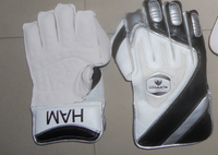 Hammer Pro Wicket keeper Gloves