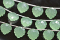 Prehnite Green Chalcedony Carved Heart Shaped Leaf Briolettes
