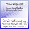 Inner Soulutions VAT Frequencies - Bone Mending - Cat's Purr