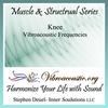 Inner Soulutions VAT Frequencies - Knee