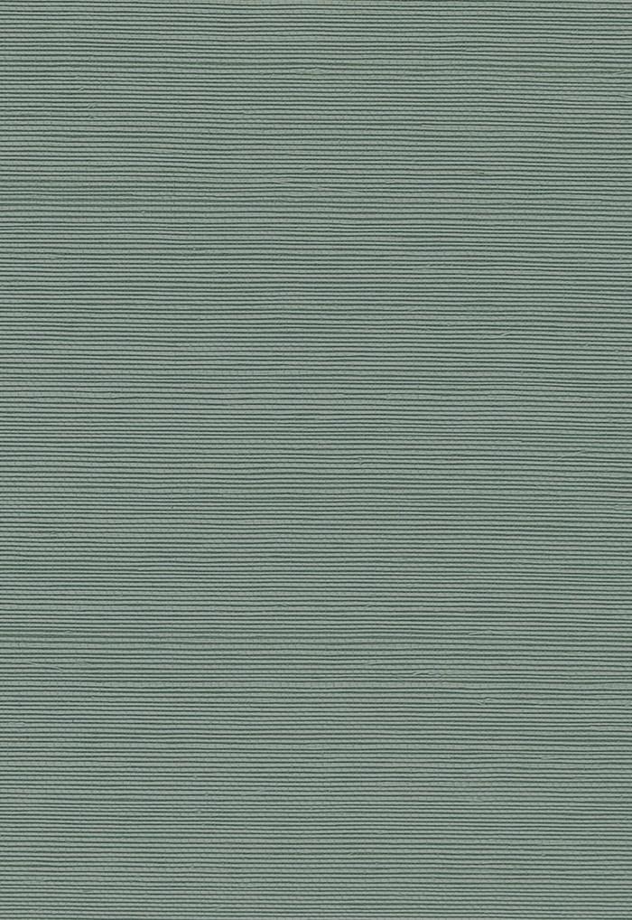 5004707 Nile