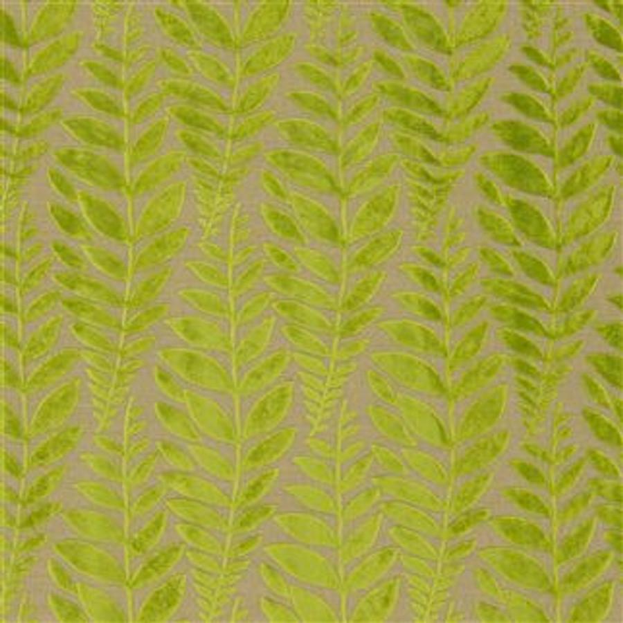 Foglia in Leaf