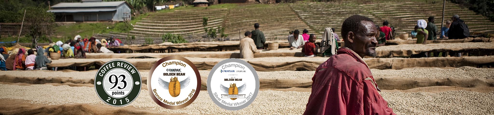 MISTY VALLEY | ETHIOPIA