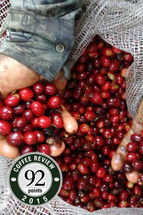 Finca San Luis Espresso - Colombia - SOLD OUT