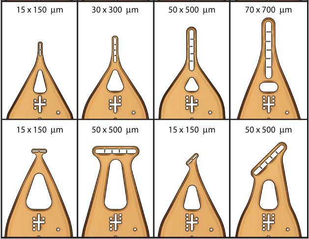 microloops8.jpg