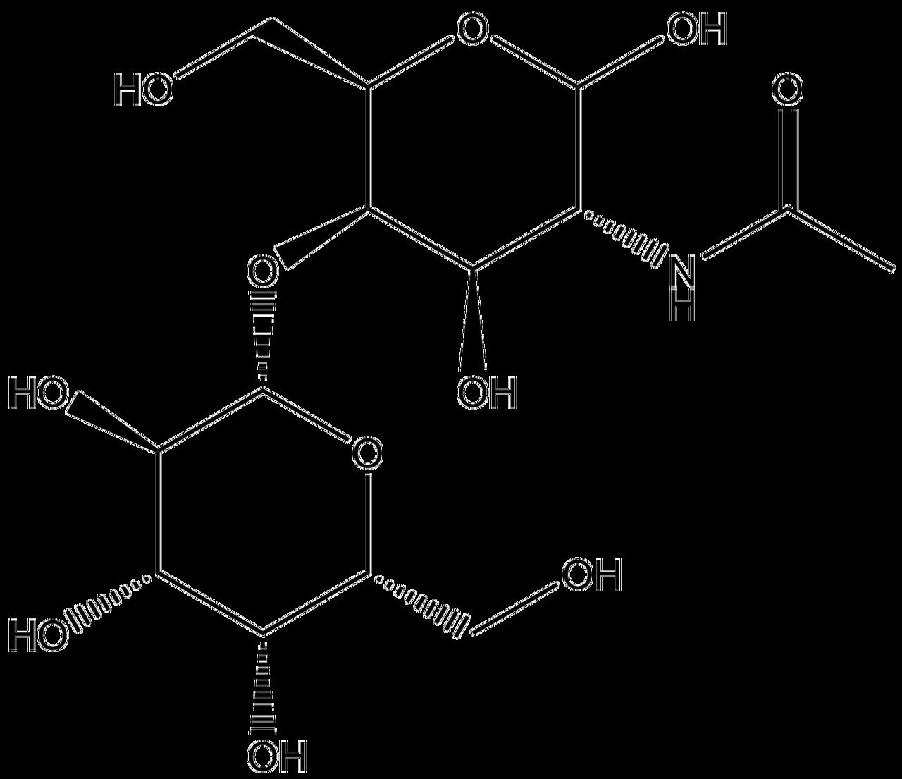 D Galactopyranose 2-Acetamido-2-deoxy-4-O- b-D-
