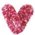 Fuzzy Footies Red/Magenta/Pink