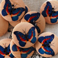 10 Wood Buttons - Blue Butterfly - 3cm