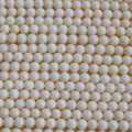"16"" Natural White Coral Round Beads 3.5mm - 8mm"