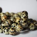 Semi-Precious Gemstone Dalmatian Jasper Round Beads 4mm, 6mm, 8mm, 10mm