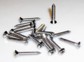 1958-62 Corvette Door Panel Screws