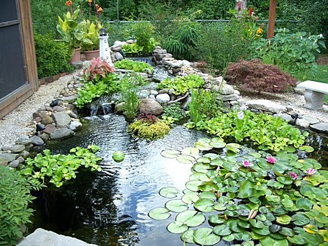 Small pond products for Small pond construction