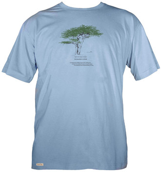 Men's Organic Cotton Short Sleeve Tree Designs
