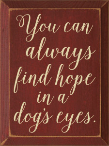 You Can Always Find Hope In A Dog's Eyes.  Wood Sign