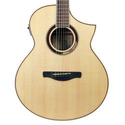 Ibanez AEW51 Artwood Exotic Tone Wood Acoustic Electric Guitar in Natural