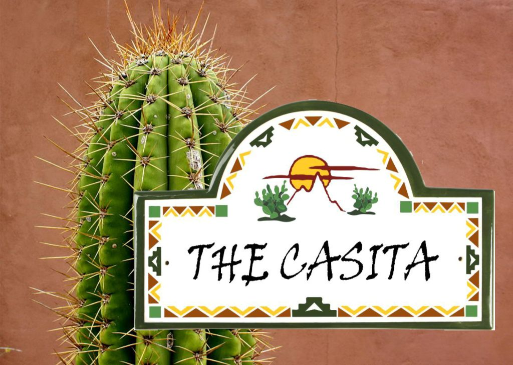 classy pictures of cactus house plants. Including cactus in your desert landscaping is a great way to add visual  interest and make bold statement As the case with other plants Discover Beauty of Desert Cactus Classy Plaques Store